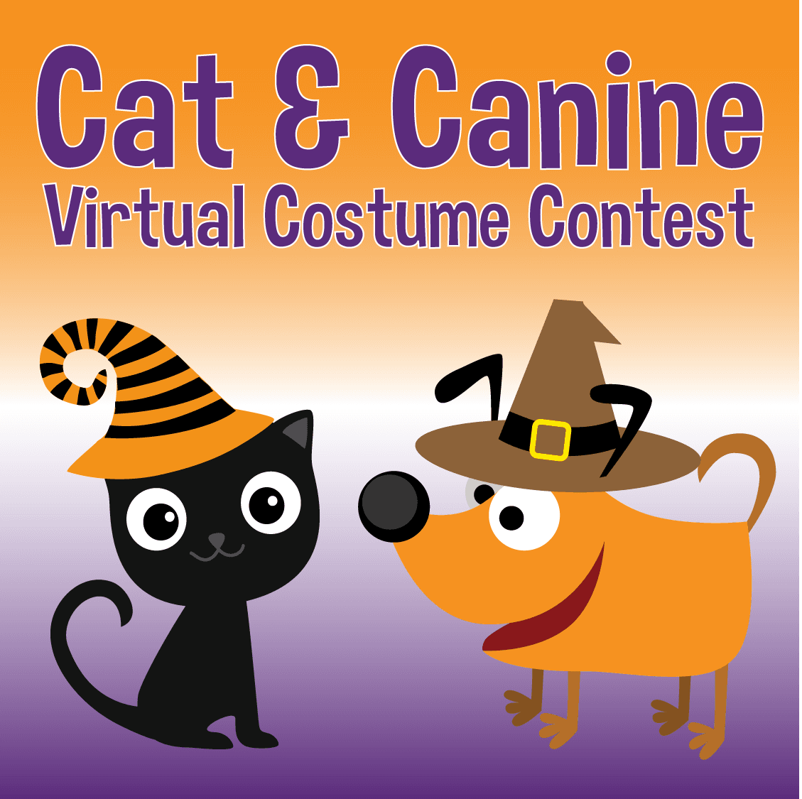 Costume contest for cats and  canines